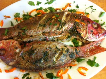 Top 28+ - Baked Snapper - baked snapper with chipotle ...
